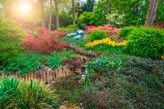 开花的郁金香和五颜六色的花在意想不到的Keukenhof停放,荷兰 库存图片