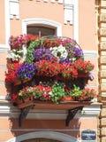 开花的阳台典型的房子 免版税库存图片