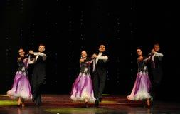 开花的紫罗兰以色列民间舞蹈这奥地利的世界舞蹈 库存照片