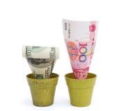 开花的RMB和退色USD 库存照片