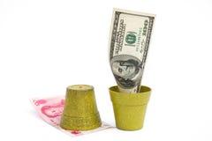 开花的USD和腐烂的RMB 库存照片