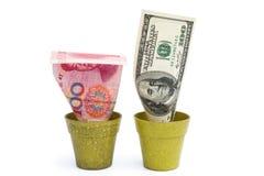 开花的USD和退色RMB 图库摄影
