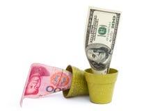 开花的USD和退色RMB 免版税库存图片