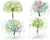 开花结构树 皇族释放例证