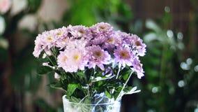 开花花束,自转,花卉构成包括紫色菊花saba 在.eps文件,分别地编组每个元素 股票视频