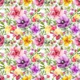 开花草甸 无缝花卉的模式 水彩 免版税库存照片