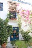 开花葡萄酒庭院露台费斯特的装饰,西班牙,欧洲 免版税库存图片