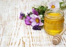 开花蜂蜜 库存图片