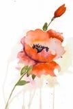 开花被传统化的例证 免版税库存图片