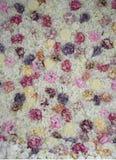 开花霍滕西亚桃红色,丁香,白玫瑰,背景 免版税图库摄影