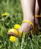 开花鞋子在黄色之下 免版税库存照片
