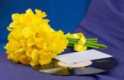 水仙开花,在背景的信封与唱片 库存图片
