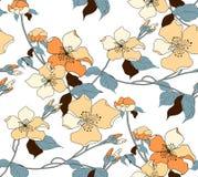 开花 无缝的背景 例证花卉样式 库存例证