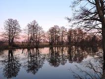 开水道与美好的树反射,立陶宛风景 库存图片