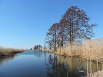 开水道与美好的树反射,立陶宛风景 图库摄影
