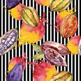 异乎寻常的在水彩样式样式的猴面包树狂放的果子 免版税库存图片