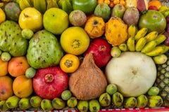 异乎寻常的果子显示 免版税库存照片