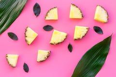 异乎寻常的果子样式 Pinneapple切片和叶子在桃红色背景顶视图copyspace 库存图片