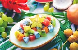 异乎寻常的热带水果沙拉在一半服务瓜 图库摄影