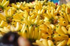 异乎寻常的热带水果,在摊位的香蕉显示 库存照片