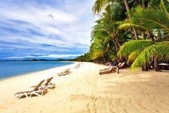 异乎寻常的热带海滩。 免版税图库摄影