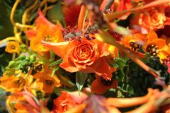 异乎寻常的花花束  免版税库存照片