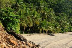 异乎寻常被放弃的海滩 免版税库存照片