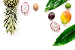 异乎寻常的果子食物概念 山竹果树, dragonfruit,芒果,猕猴桃,在白色背景顶视图copyspace的菠萝 库存照片