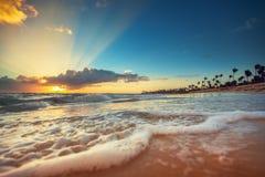 异乎寻常的海滩在多米尼加共和国, punta cana 免版税库存图片