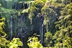 异乎寻常的瀑布在毛里求斯 免版税库存照片