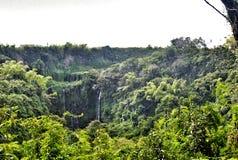 异乎寻常的瀑布在毛里求斯 免版税库存图片