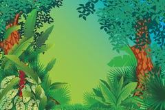异乎寻常的热带森林 向量例证