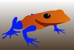 异乎寻常的青蛙3 图库摄影