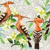 异乎寻常的鸟、叶子和花的无缝的样式 免版税图库摄影