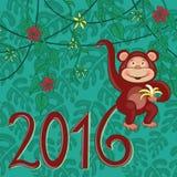 异乎寻常的猴子2016年 皇族释放例证