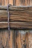 异常分支生锈的被风化的木头 库存图片