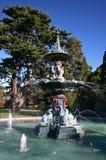 异常孔雀喷泉运行在绿色树前面的在克赖斯特切奇植物园里,新西兰 免版税库存照片