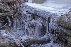 异常的冰在森林小河下落的分支计算 库存图片