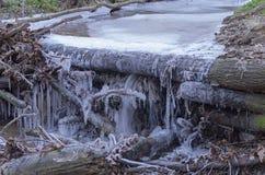 异常的冰在森林小河下落的分支计算 免版税图库摄影