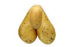 异常的土豆 库存照片