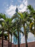 异常的看法从一个屋顶的台北101有棕榈树的- 2 库存照片