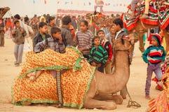 弄出声响和乘坐在沙漠节日的人群的孩子一头骆驼在印度 免版税库存照片