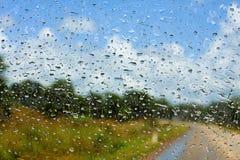 弄湿挡风玻璃 库存图片
