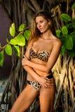 式样摆在性感在热带密林树前面 库存图片