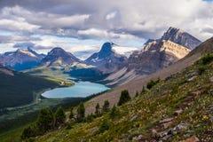 弓湖和医学山从弓通行证在班夫国家公园 图库摄影