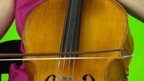 弓的大提琴关闭接触串 绿色屏幕 股票视频