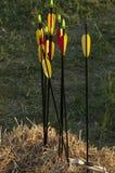 弓箭,秸杆 库存图片