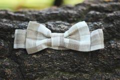 弓领带 库存图片