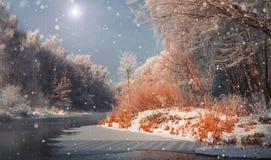 引人入胜的冬天风景 库存照片