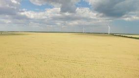 引起在麦田的现代风轮机绿色能量 航测 影视素材